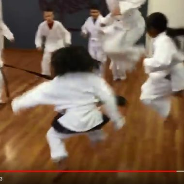 Kids Karate Team Drill (video)…