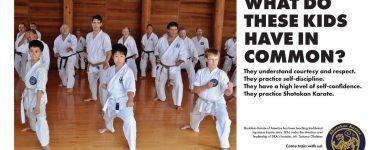 Shotokan Karate for kids in Twin Falls…